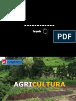 11 Agricultura