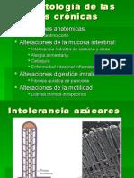 10-10 Diarreas crónicas