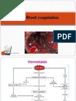 8 Blood ClottingAstud(32 1)