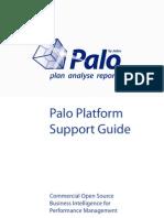 Palo Platform Support Guide
