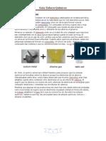 Guía Enlaces Químicos
