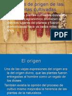 Origen Sudamericano