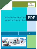 Mercado del Alto Valle para el Producto Nieve. Informe Técnico de Investigación de Mercados