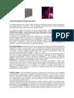 CorrienteEléctrica-PC