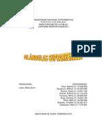GLÁNDULAS SUPRARRENALES (INFORME) UNEFM