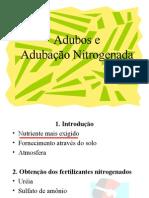 3-Adubação nitrogenada