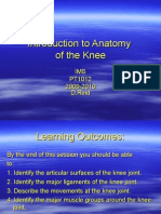 Introduction to Anatomy of the Kneeuelplus0