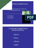 Dermatología. Lesiones elementales I