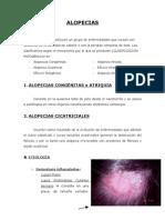 Dra. Sánchez-Pedreño.ALOPECIAS (22.10.07). Naya