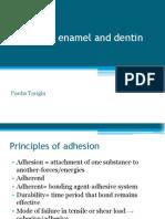 Bonding to Enamel and Dentin