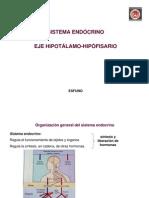 clase del 14.10.11-Sistema endócrino.