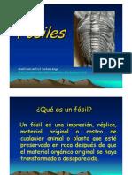 Microsoft Word - FOSILES
