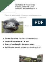 Universidade Federal de Minas Gerais- apresentação plano de aula