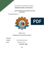 ACIDO FITICO Informe Entrega