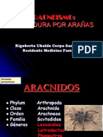 Aracneismo. ponencia