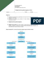 Guia Regulación de la presión sanguínea y estres