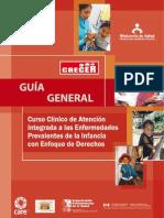 RM364-2008 Aiepi - Guia General