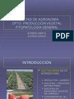 fitopatologia gral 1