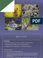 fitopatologia gral 2