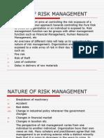 Nature of Risk Management