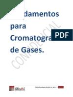 Temario CG