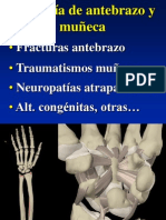 23 - patología de antebrazo y muñeca
