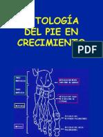 33 -  patología del pie I (niño)