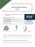 Ficha de trabalho Ciências 5ºano - Raízes e Caules