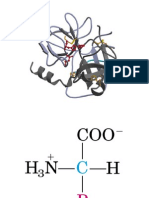 Clase_Proteinas1_Bioquímica I
