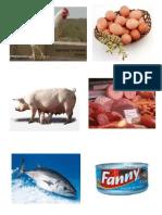 animales  y producto