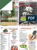 """Revista """"aTa"""" 10 (2011)"""