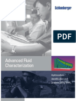 Advanced Fluid Characterization (Schlumberger)