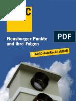 Flensburg-Punkte_2010-08-04