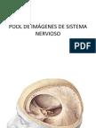 POOL DE IMÁGENES DE SISTEMA NERVIOSO(FILEminimizer)