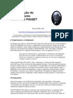 A construção do conhecimento SEGUNDO PIAGET 1