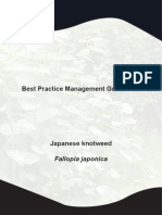 Japanese Knotweed BPM-1
