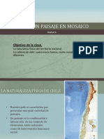 Chile , Un Paisaje en Mosaico