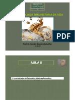 Paleonto CA Aula5 Invert Paleoz Medio Cenoz [Modo de Compatibilidade