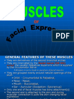 The Muscles Of Facial Expression