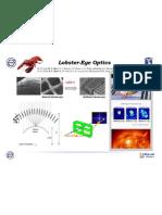 Lobster-Eye Optics