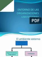 Entorno de La Organizacion Limitaciones