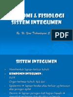 Anatomi & Fisiologi Sistem Integumen