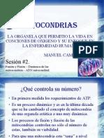 MITOCONDRIAS SESION 2