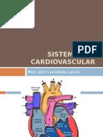 Sistema_cardiovascular1