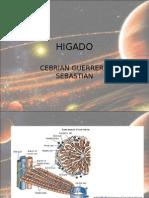 Fisiopatologia de Higado e Ictericia