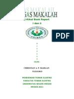 Critikal Book Report I Dan II