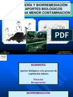 20071005 Biomineria y Biorremediacion Donati