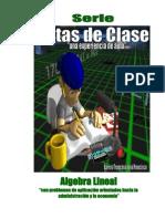 Notas de Clase- Algebra Lineal 2011