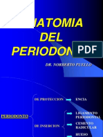 Anatomia Del Period on To