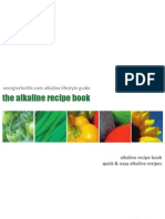 Alkaline Recipe Book Sample